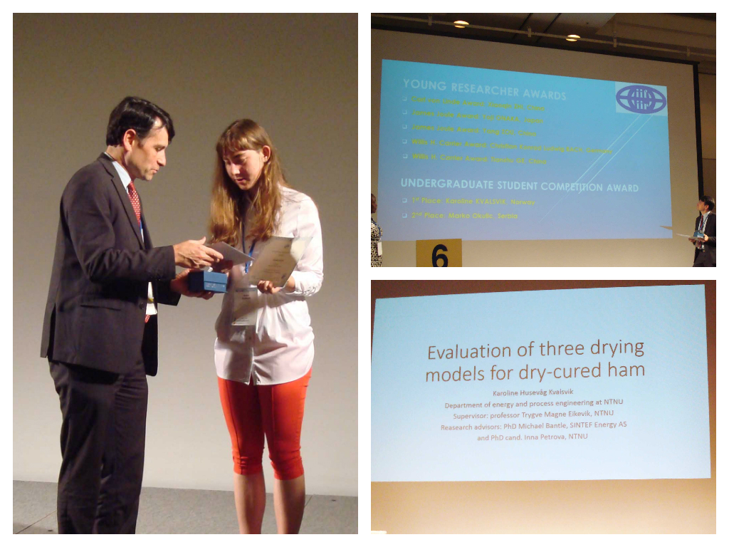 "Karolines project work ""Evaluation of three drying models for dry-cured ham production"" won the first price for undergraduate student work at the 24th International Congress of Refrigeration (ICR2015)."