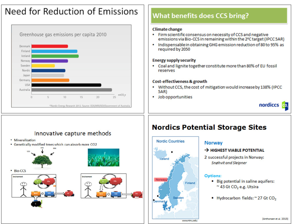Excerpts from Student's Nordic CCS Roadmaps