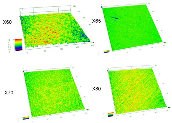 Figure 6: SEM images of 3D surface morphology for cleaned carbon steel samples after cleaning the product (test N°1).