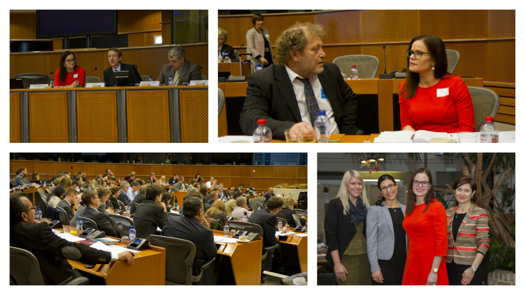 Frederic Hauge from Bellona and Marie Bysveen from SINTEF Energy - CCS European Parliament 12. November GATEWAY project (Photo: Hilde Harket, The Research Council of Norway)