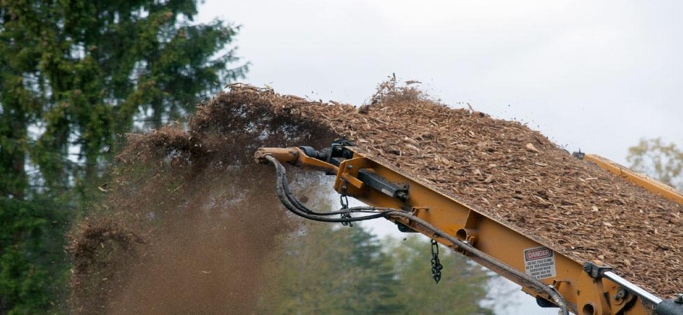 Skogsbrensel kan bli enda bedre, via torrefisering