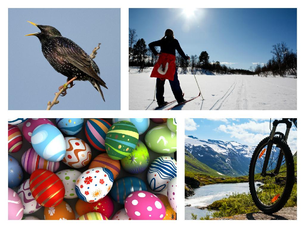 skjære ski påskeegge sykkel (Foto: shutterstock.com)