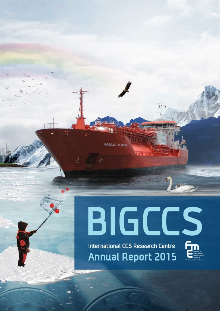 BIGCCS annual report