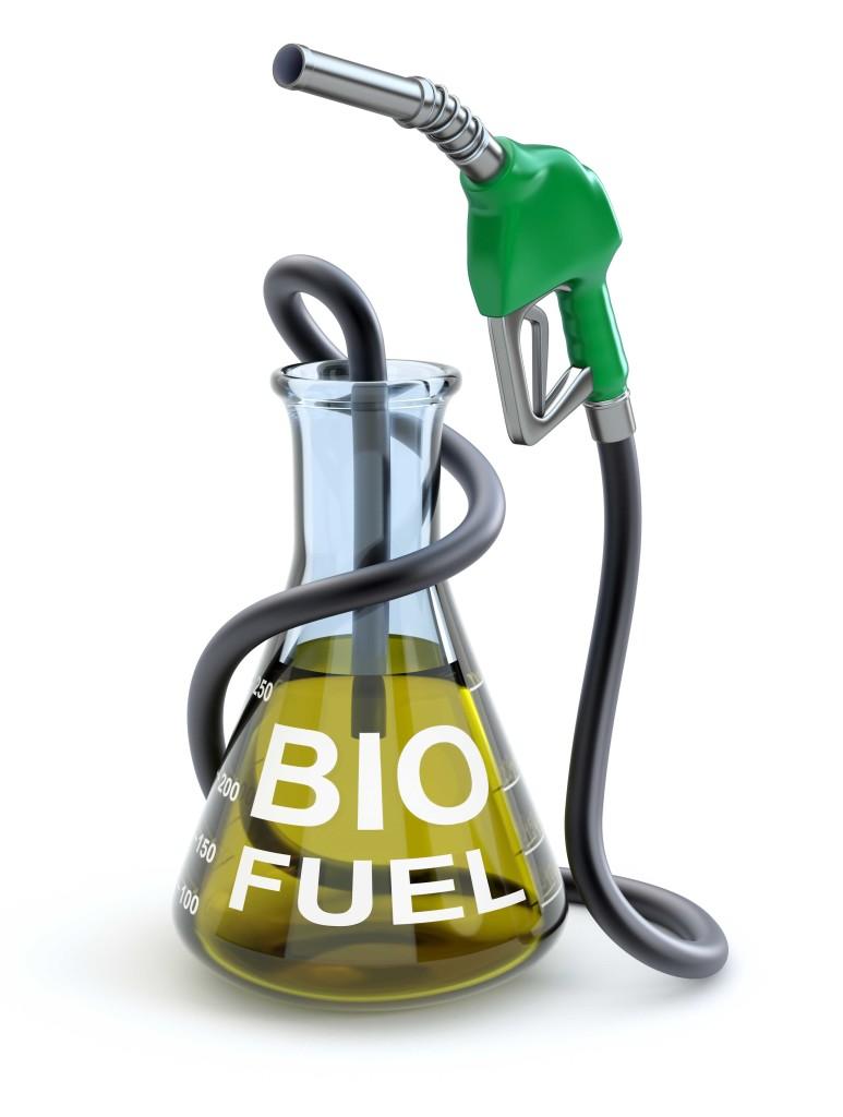 shutterstock_biofuel