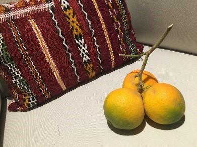 Nyplukkede, marrokanske appelsiner – kjøpt på nærbutikken med kvist og blad på – se bilde: 'Appelsin og pute med marokkkansk vri' – Moderne fotokunst av M. Bysveen :-)