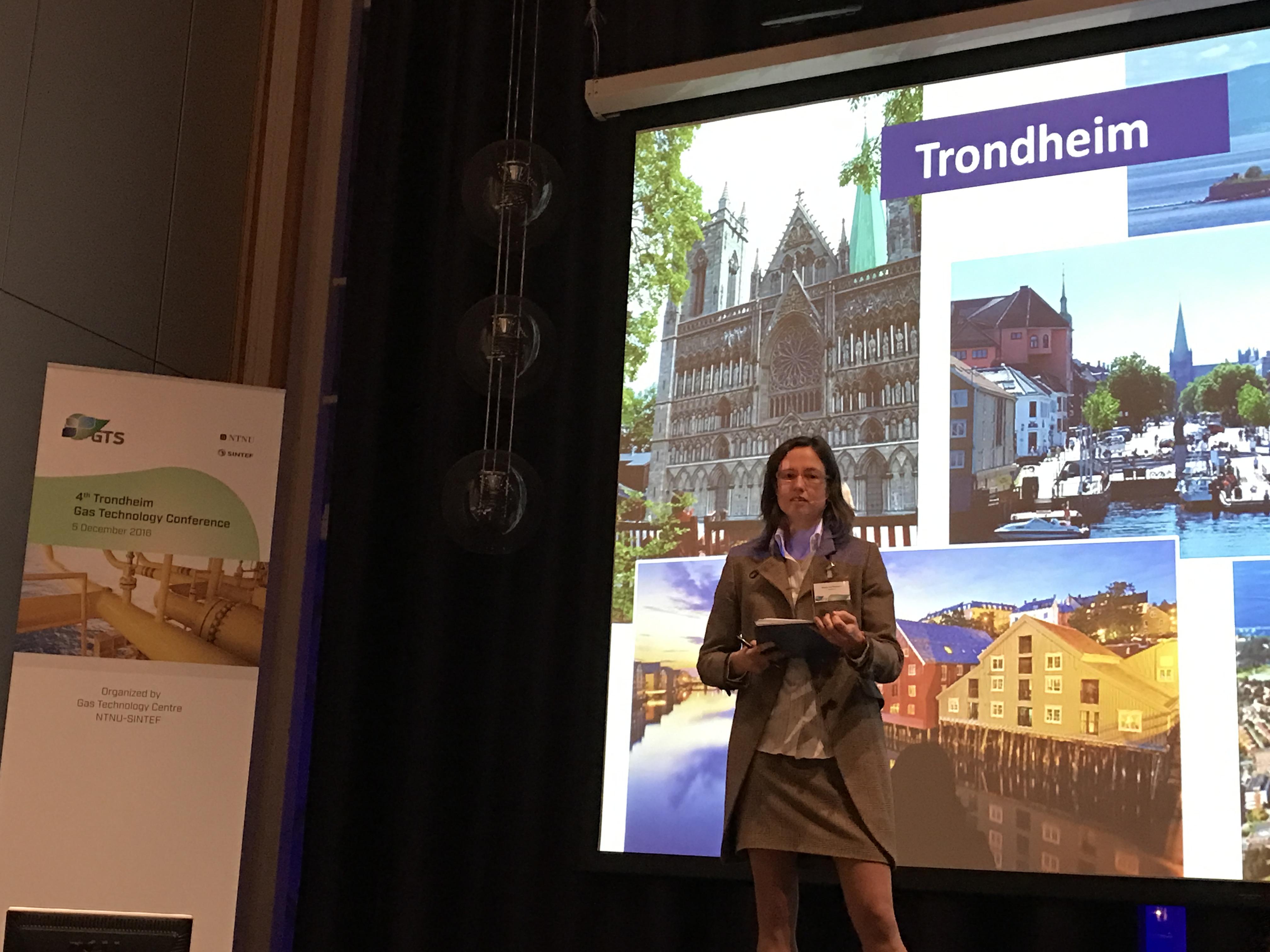 Sonja van Renssen presenting