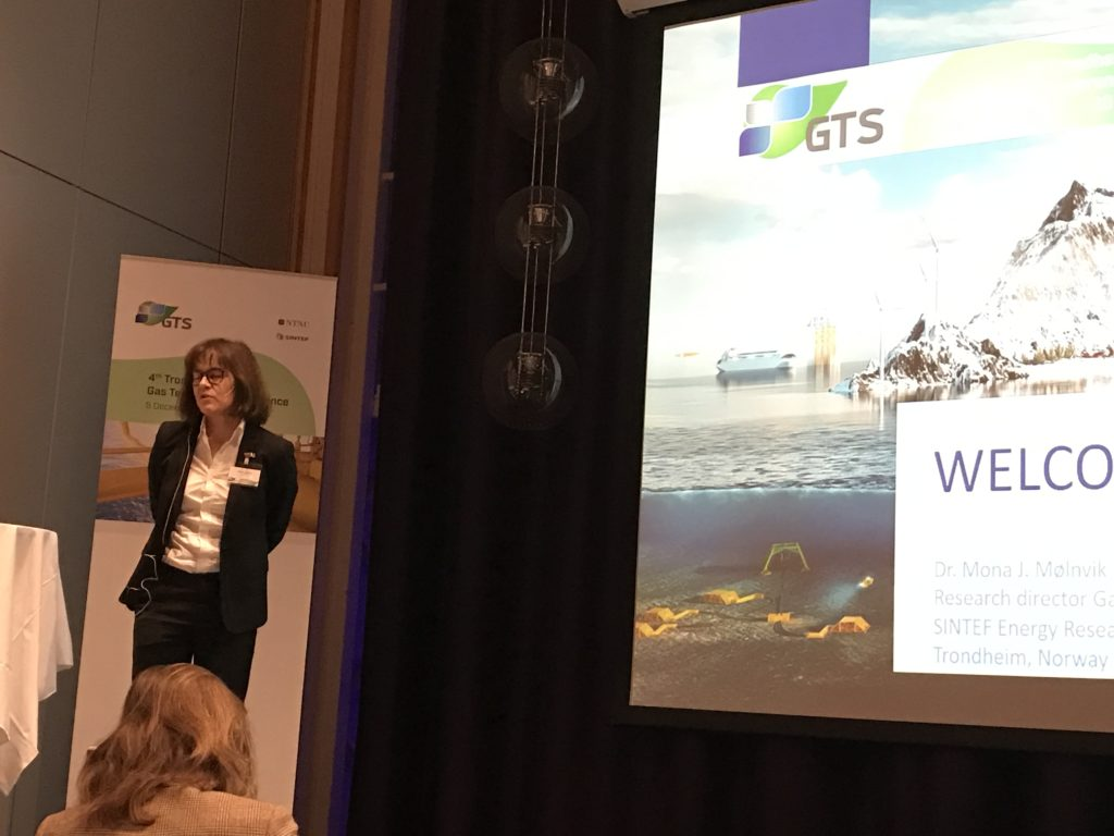 Mona Mølnvik, Research Director at SINTEF, said that we take the norwegian natural gas development for granted, but it has taken 50 years of innovation and research effort. NTNU and SINTEF has played an important role in this development. She also stressed the importance of CCS.