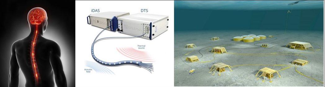 Sammenligninger mellom det menneskelige sentralnervesystemet og DFO-systemet (i midten, gjengitt med tillatelse fra Silixa Ltd.), og en moderne feltinstallasjon i petroleumssektoren (høyre, gjengitt med tillatelse fra Statoil).