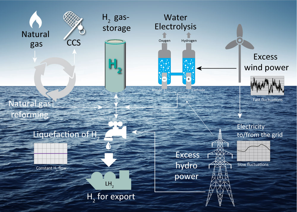 Future Business Models for CCS: Hydrogen from natural gas