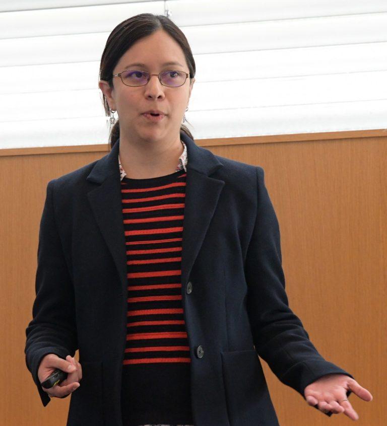 Diana Iruretagoyena (ICL)