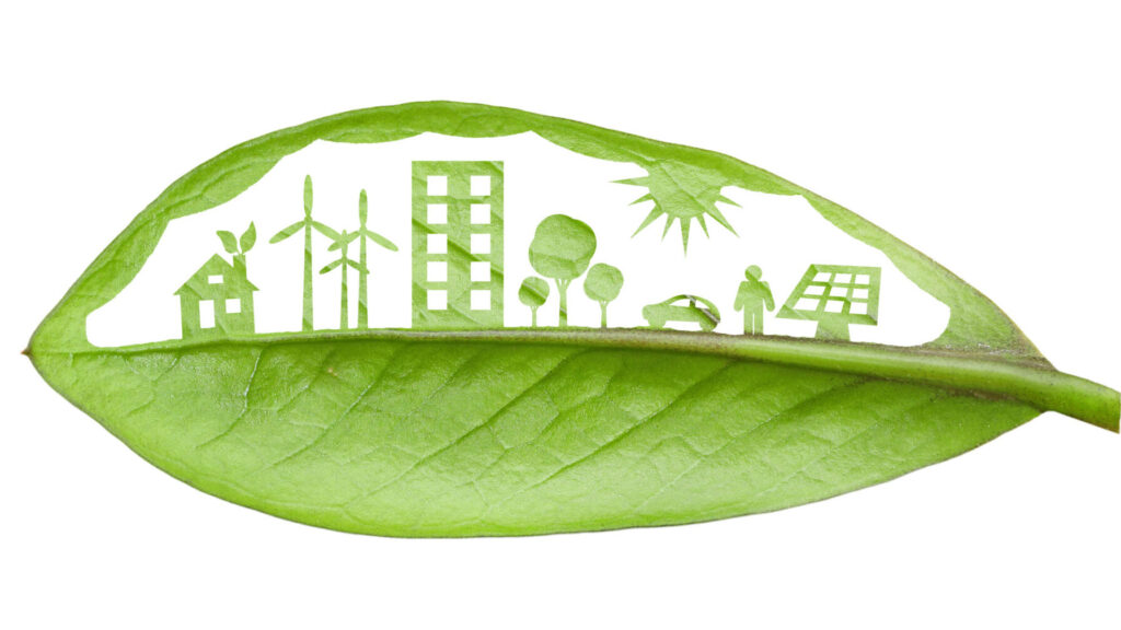 Green leaf cut in a way that shows various sources of renewable energy